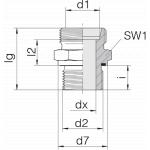 Соединение штуцерное 24-SDS-L15-G1/2E