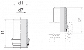 Ниппель приварной 24-WDNPSO-38x7-C10
